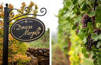 Diptych_Portland_Wedding_Vineyard_wedding_Parallel_Photography_01_72 dpi_1550px